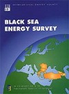 Black Sea Energy Survey
