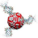 نانوذرات Tio2 به منظور کاربردهای خود تمیزشوندگی