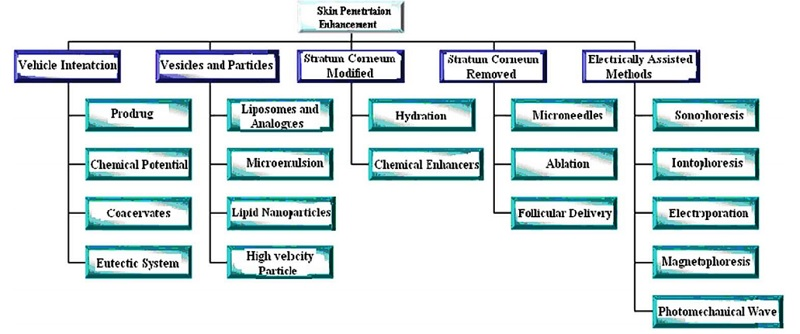 Enhanced Transdermal Drug Delivery Techniques: An Extensive Review of Patents